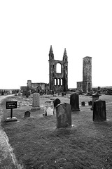 St Andrews Cathedral and St Rule's Tower