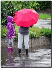 Roter Schirm