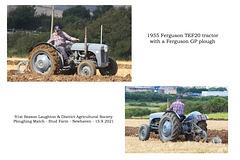 11 Ferguson TEF20 1955 - Ferguson GP -  C J Fryer