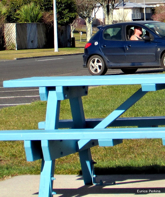 Car on Picnic Table