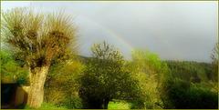 Quand la pluie danse avec le soleil [ON EXPLORE]