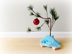 """My """"Charlie Brown"""" Christmas..."""