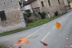automne venteux !