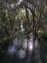 Por la ribera del río Genil