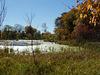 Pond @ Baker Sanctuary