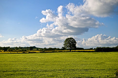 Evening clouds over Gnosall