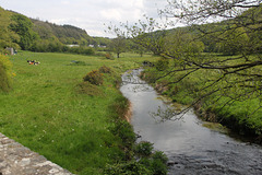 River Gwaun