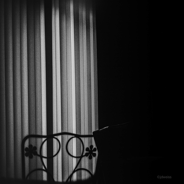 chairs in the shadows