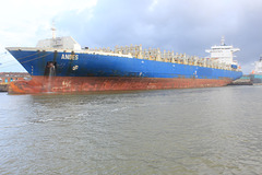 Containerfrachter ANDES