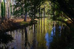 Un cours d'eau à découvrir , la Juine  .