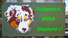 gleich Shepherd's