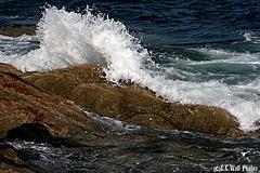 Rising Tide near Pemaquid Point