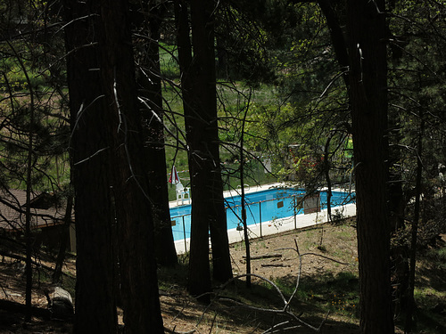 Swimming Pool at Camp Round Meadow (2711)