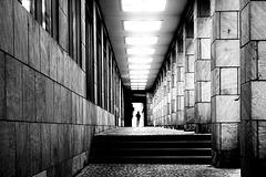Frau im Gegenlicht - Young lady in the backlight