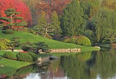 Japanese Garden Scene in Autumn