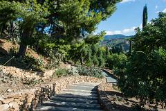 Jardín Botánico-Histórico La Concepción (© Buelipix)