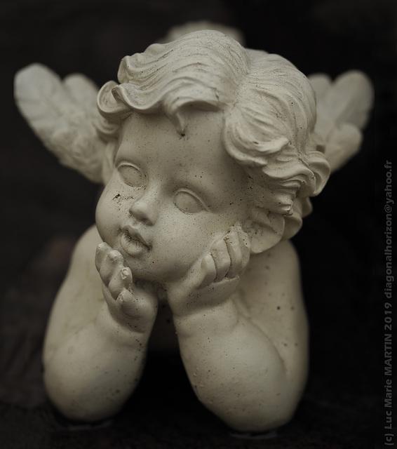 Rêvez peu mais rêvez bien... / Dream few but dream solid... (Angel series)