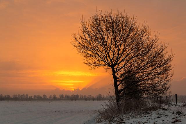 Lever du soleil en Allemagne