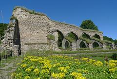Sweden - Alvastra kloster
