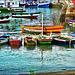 Salvador de Bahìa : o porto de pesca - (604)