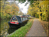autumn mooring