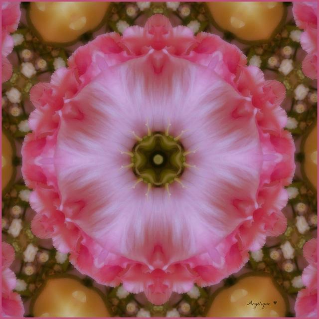Kaleidoscope .Rose .....bonne journée et bon we