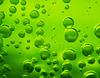 Green Bubbles (Explored)