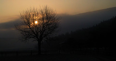 1 (48)...austria loweraustria ...gloggnitz..eichberg sunrise