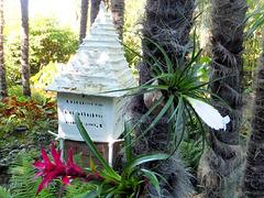 Orchideen. ©UdoSm