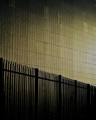 Fence,wall and sunlight