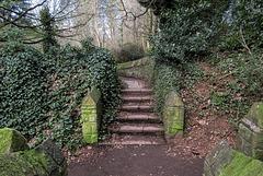 Fenney Lane steps