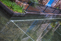 Reflections and Fence