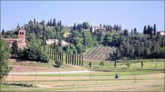 Toscane (I) 19 mai 2011. Entre Certaldo et Lucca.