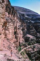Abstieg ins Wadi Qelt / Down into Wadi Qelt (3 x PIP)