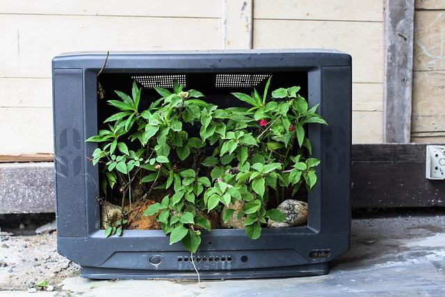 Pour une Meilleure Utilisation de la Télévision