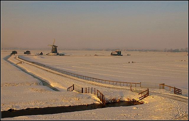 Snowy Holland
