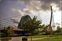 Valencia : gli stralli che sostengono le ardite strutture di Santiago Calatrava :   Pont L'Assut de l' Or -