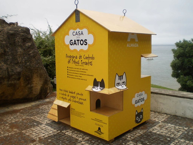House of the cats.