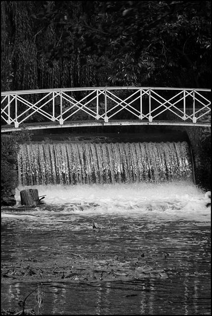 Après l'Amazone, les chutes d'Iguazú-sur-Essonne