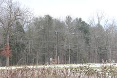 CL&P 4.8kV - Harwinton, CT