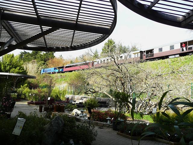 27-le train des Cévennes