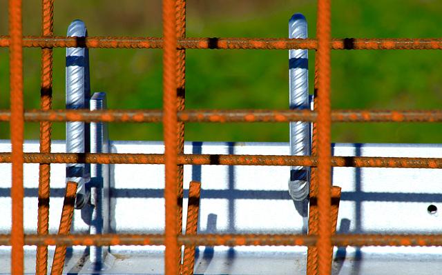 A sunny Fence on a rainy Friday