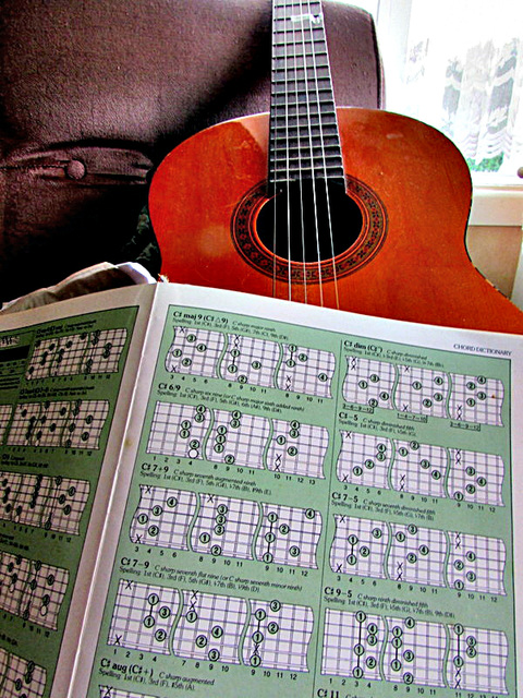 Guitar and Music Book.