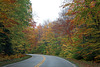 Bear Notch Road