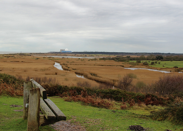 Dunwich heath and marshes.