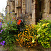 Blumen an der Église Saint Jean du Baly