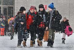 Fin des classes sous la neige