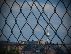 City View Fence