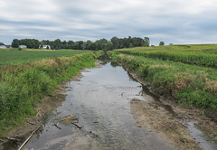A ditch of fertilizer water is in fact the Little Thornapple River.