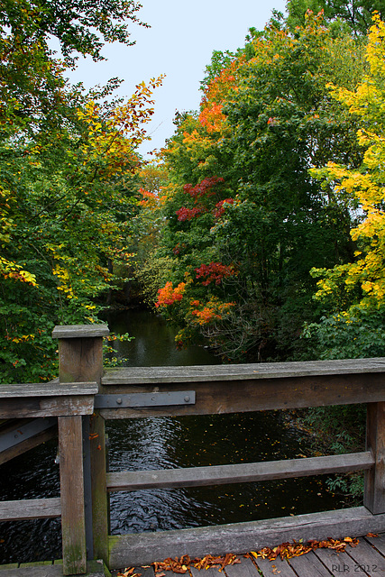 Herbst im Schlosspark Tiefurt